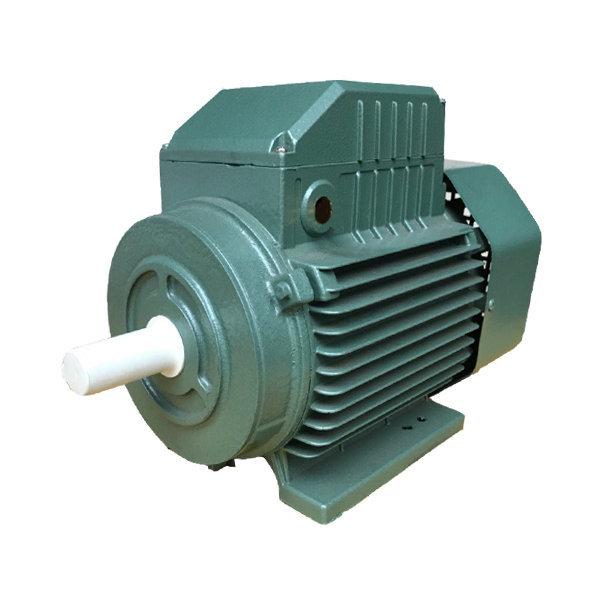 Động cơ điện 1 pha Cá Sấu YL100